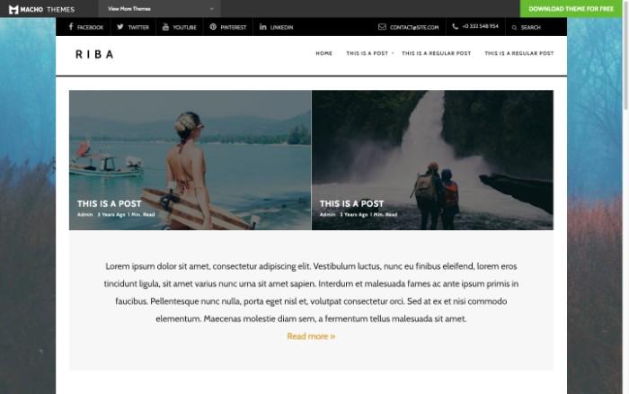 motyw-WordPress-Riba-Lite.jpg