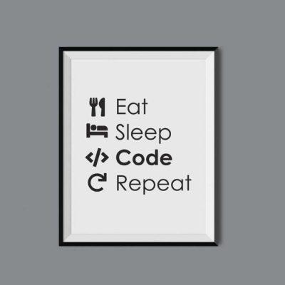 plakat-programisty.jpg
